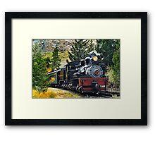 West Side Lumber Shay #14 on the Georgetown Loop Railroad Framed Print