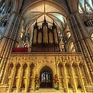Lincoln Cathedral by cameraimagery