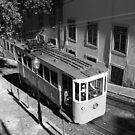 Tram in Lisbon by PMJCards
