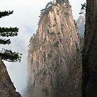 Mountain Mist  by alex9mm