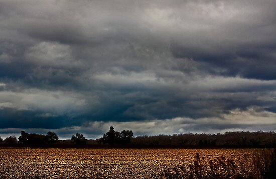 Stormy Countryside by Buckwhite