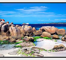 Pure Shores, Mount William National Park TAS by Chris Munn