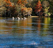 River Rocks At Mountain Fork Park by Carolyn  Fletcher