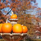 Pumpkins in Autumn Fountain by dbvirago