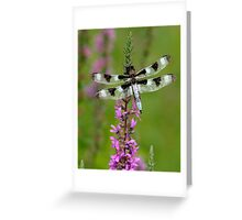Indian Park Dragonfly Greeting Card
