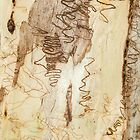 Squiggles on the Eucalypt by Karen Willshaw
