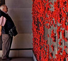 Lest We Forget by Matt Hill