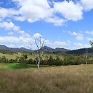Mount Barney Panorama by Noel Elliot
