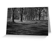 Shadows of Gostwyck Greeting Card