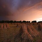 Drying crops ! by Gary Richardson