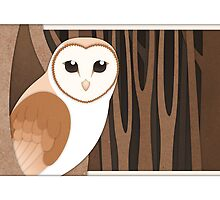 Barn Owl  by Diony  Cook
