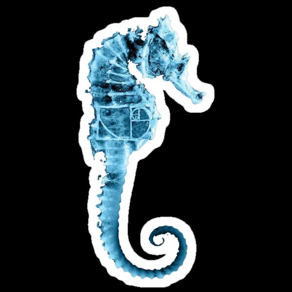 seahorse fringe by nefos