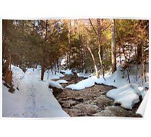 Snowy Trail Along Kitchen Creek Poster