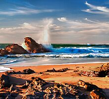 "Seaside Spray - Half Moon Bay by Michael "" Dutch "" Dyer"