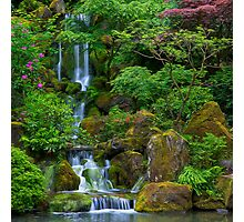 Garden Waterfall Photographic Print