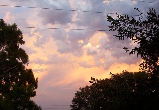 Big Evening Sky - 28 12 12 by Robert Phillips