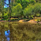Malmsbury Reflections  # 2 - Malmsbury Botanical Gardens, Malmsbury Victoria - The HDR Experience by Philip Johnson
