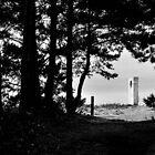 Obelisk  by Simon Pattinson