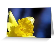 Spring In The Spotlight Greeting Card