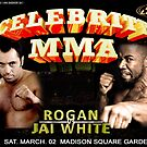 Celebrity MMA Poster_2 by ANDIBLAIR