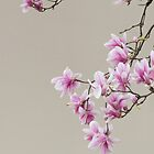 Magnolia blooming iPad case by Oleksiy Rybakov