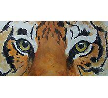 Tiger-The Last Stare-TigerTLS-001 Photographic Print