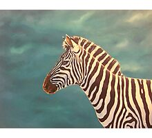 Equidae 2 Photographic Print