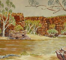Trephina Gorge, Northern Territory by Virginia  Coghill