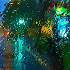 January Rain on the Windshield by David Denny