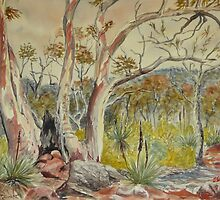 Charred tree, Dutchmans Stern NP, Flinders Ranges by Virginia  Coghill