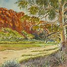 Glen Helen Gorge, Central Australia by Virginia  Coghill