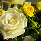 Roses are yellow by onemistymoo