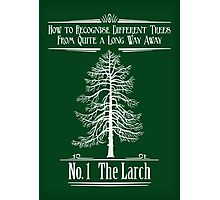 No. 1 The Larch Photographic Print