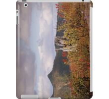 shattered tree & paintbrush wildflowers on Johnston's Ridge iPad Case/Skin