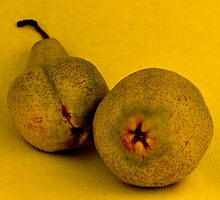 Pear Pair by Thomas Barker-Detwiler