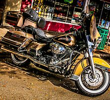 Custom vintage Harley motorcycle  by chris-csfotobiz