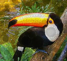 Can A Toucan Do the Can Can? by Bunny Clarke