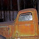 Old Dodge Truck by Terri~Lynn Bealle