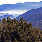 A Smoky Mountain View by Terri~Lynn Bealle