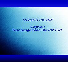 Banner Zingers Top Ten by Ann Warrenton