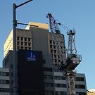 thee cranes ov Brisbane 2013 DAILY TOUR - Day 12 by Craig Dalton