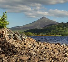Schiehallion and Loch Rannoch by Paul  Gibb