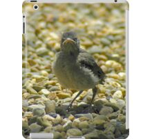 """I Don't Care""  Chick Card iPad Case/Skin"
