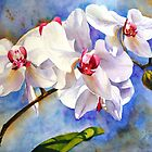 Dancing Orchids by bettymmwong