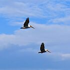 In Flight Together 1 by Dawne Dunton