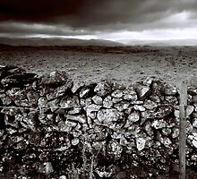 Dry stone and barbed wire by TinDog