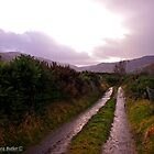 New Years Day Walk in the Glens of Antrim by Laura Butler