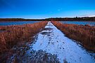 Winter's path through Great Meadows by Owed to Nature