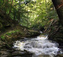 Trekking Past Seneca Falls by Gene Walls