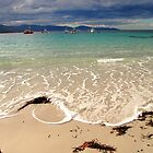 waubs bay, G12 style. eastcoast, tasmania by tim buckley | bodhiimages